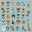Big set isolated animals. Vector collection funny animals in cartoon style. Cute animals: forest, asia, africa, farm, domestic, arctic.