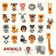 Big set funny animals. Vector collection isolated animals in cartoon style. Cute animals: forest, asia, africa, farm, domestic