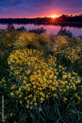 Fotografia, Obraz  Summer Sunset above field and river
