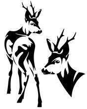 Roe Deer Black And White Vector Design