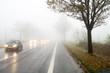 Nebel im Straßenverkehr / Autos / Schlechte Sicht