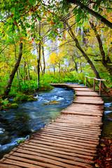 FototapetaBoardwalk in the park Plitvice lakes