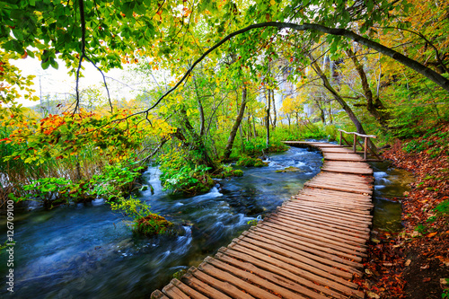 Aluminium Prints Road in forest Boardwalk in the park Plitvice lakes