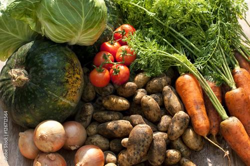 収穫した野菜 Fototapet