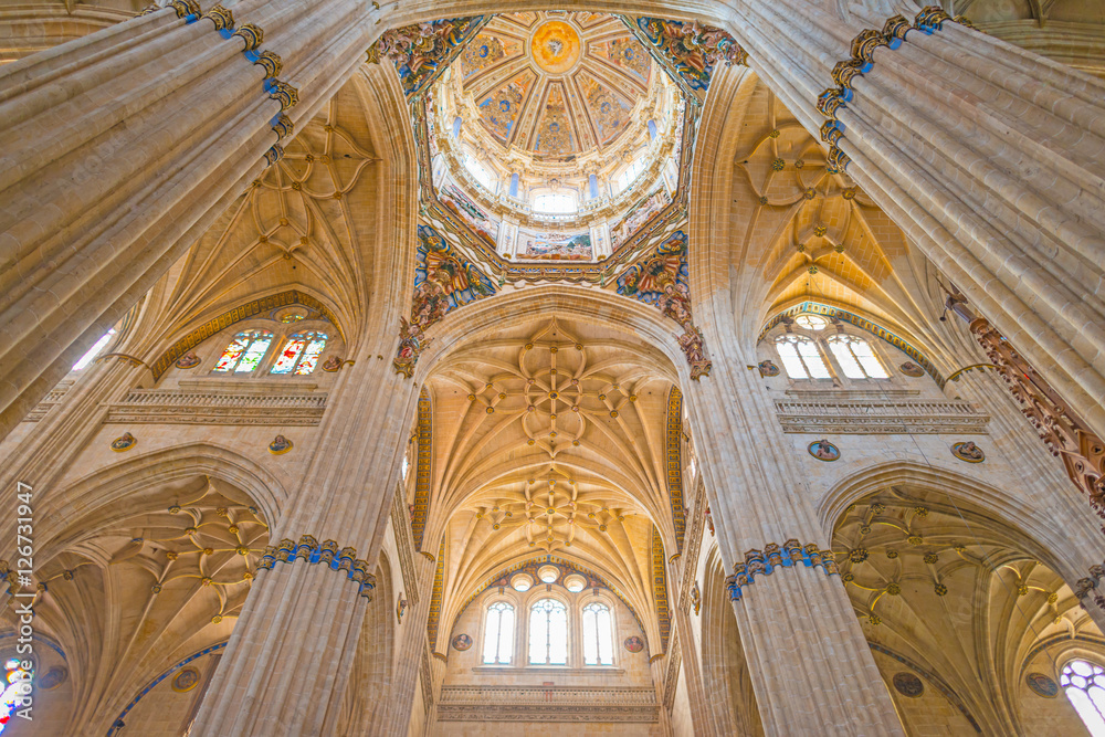 Fototapety, obrazy: Detail of the medieval cathedral of Salamanca