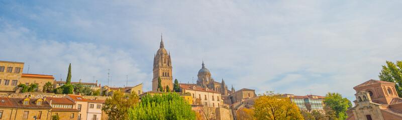 Fototapeta na wymiar Skyline of the city of Salamanca