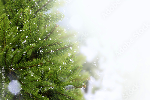 Stampe  Christmas Tre with snow