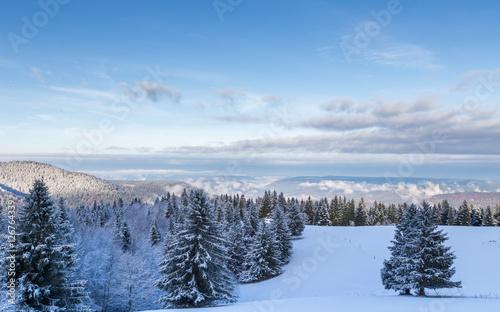 neige dans les Vosges Canvas Print