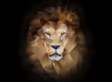 Lion Polygon Geometric