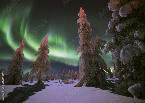 Poster Scandinavië Winter night landscape with forest and polar northern lights