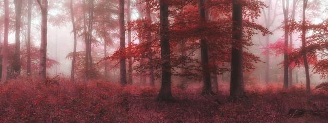 Fototapeta Mgła Beautiful surreal alternate color fantasy Autumn Fall forest lan
