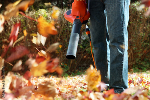 Man working with  leaf blower: the leaves are being swirled up a Canvas Print