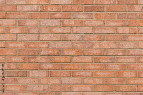 Orange brick wall for a background.