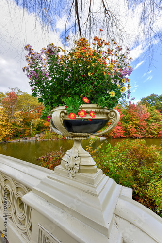 Foto Central Park in Autumn in New York City