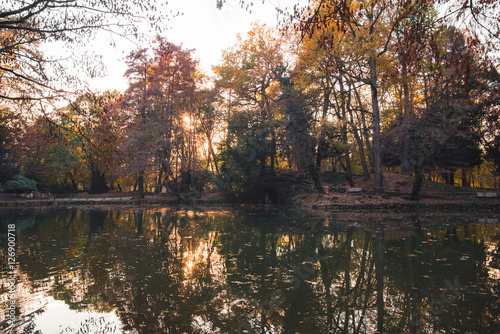Quiet lake and colorful woods in autumn at sunset