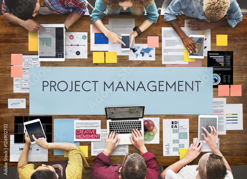 Fotomural  Project Management Organization Skill Concept