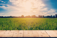 Rice Field And Wood Table Background With Space Display For Prod