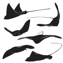 Stingray Vector Silhouette
