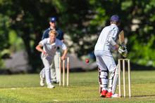 Cricket Batsman Bowler Game Ac...
