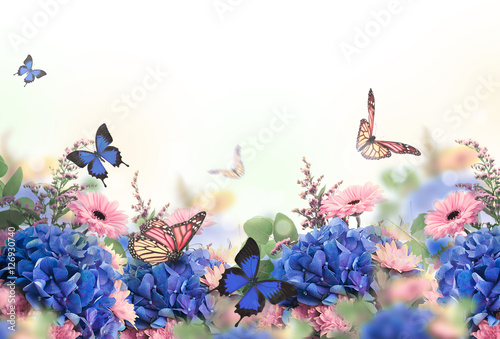 Photo sur Toile Hortensia Amazing background with hydrangeas and daisies. Yellow and blue flowers on a white blank. Floral card nature. bokeh butterflies.