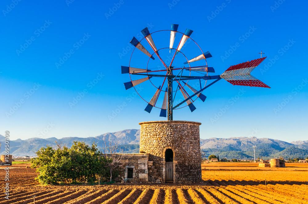 Fototapety, obrazy: Traditionelle Windmühle auf Mallorca