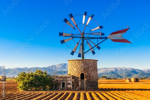 Fotografie, Obraz  Traditionelle Windmühle auf Mallorca
