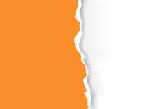 Orange Ripped Paper Background...