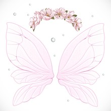 Pink Fairy Wings With Wreath O...
