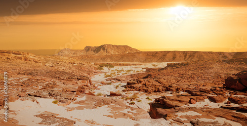 Staande foto Droogte Sinai desert landscape