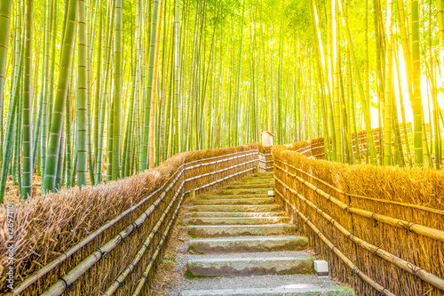 bamboo-forest-at-arashiyama-kyoto-japan