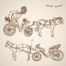 Engraving Hand Vector Horse Carriage Pencil Sketch Transport