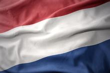 Waving Colorful Flag Of Netherlands.