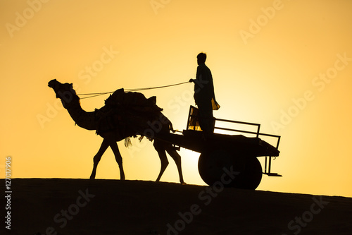 Camel silhouette with the wagon in dunes of Thar desert