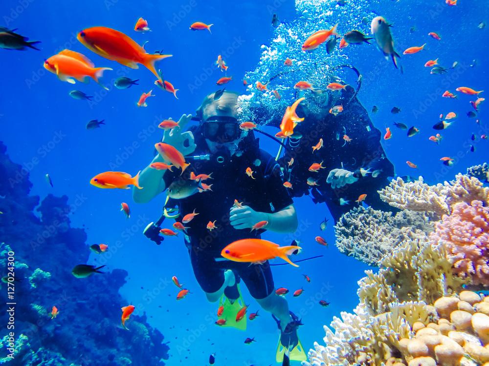 Fototapeta Активный отдых. Дайвинг у коралловых рифов