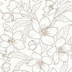 Christmas rose flowers seamless pattern. Hellebore winter rose foliage. Detailed outline sketch drawing. Vector design illustration. Brown on beige background.