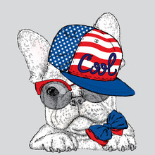 French Bulldog In Glasses And A Cap. Vector Illustration For A Card Or Poster. Print On Clothes. Cute Puppy.