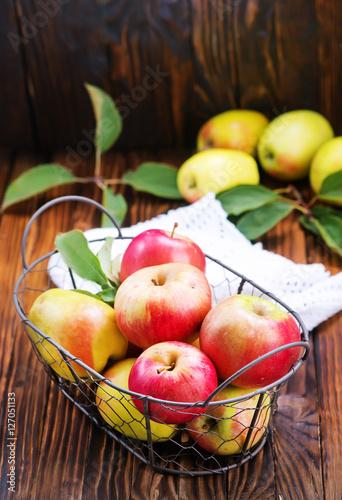 Fruits crop of apples