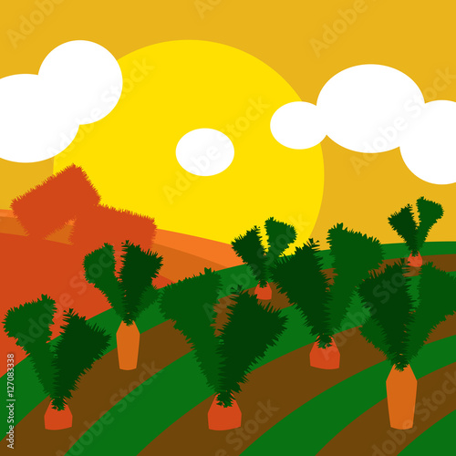 Deurstickers Groene Countryside illustration background with cultivated land fields