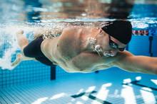 Professional Male Swimmer Swim...