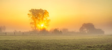 Foggy, Sunny Morning In The Countryside