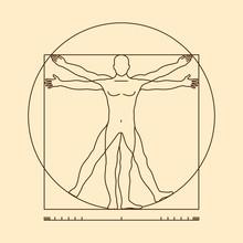 Leonardo Da Vinci Vitruvian Man Vector Illustration