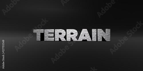 Fotografie, Obraz  TERRAIN - hammered metal finish text on black studio - 3D rendered royalty free stock photo