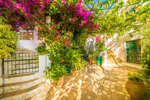 Foto auf Leinwand Honig Flower with stairs in Theotokos Monastery, Paleokastritsa town, Corfu island, Greece