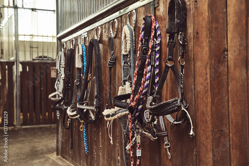 Leather horse bridles and bits hanging on wall of stable with one missing