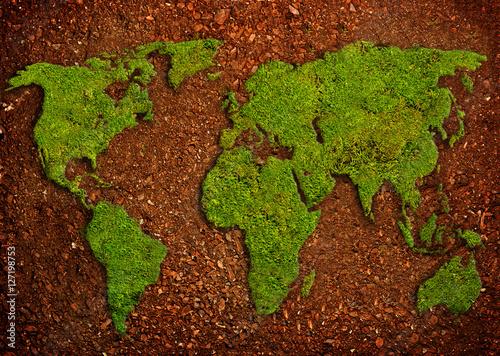 mapa-swiata-z-ziemi-i-mchu