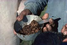 Raw Opium, Rajasthan State
