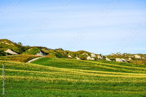 Tuscany, rural landscape in spring. Countryside green field and