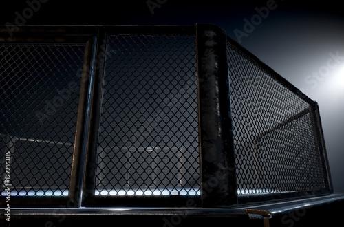Fotografie, Obraz  MMA Cage Night