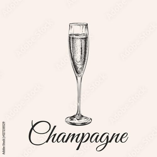 Fotografie, Obraz  Champagne Glass Hand Drawing Vector Illustration Bubbles