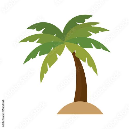 tree palm isolated icon vector illustration design Fototapeta